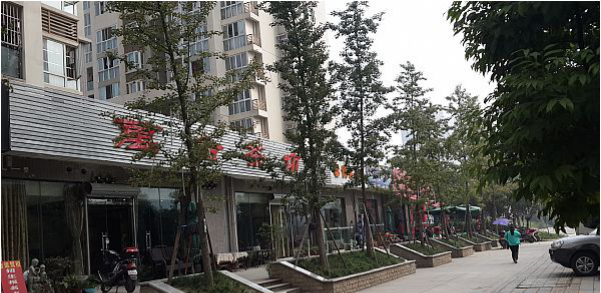 Chengdu Housing reserve center. Huangjinglou
